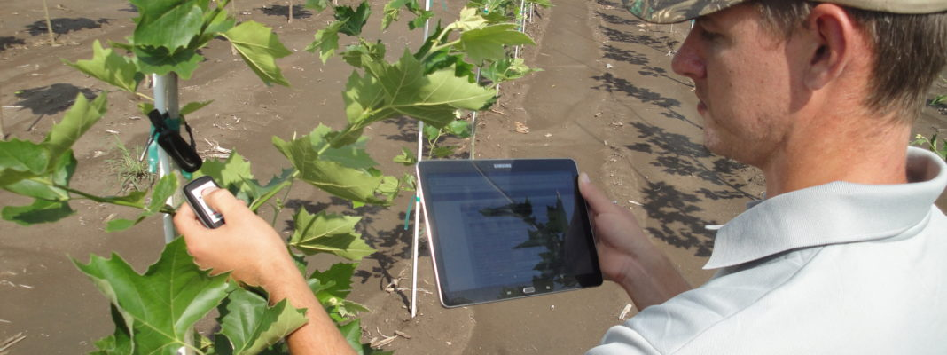 This Wisconsin Startup Is Helping Tree Growers Better Manage Their Farms